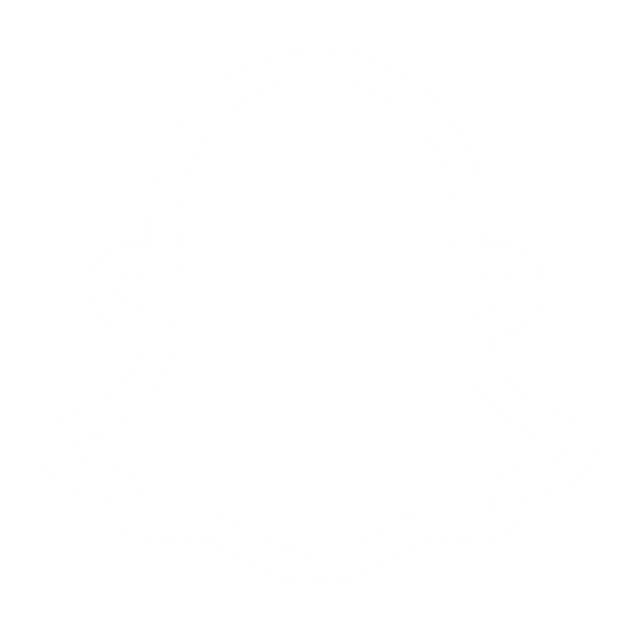 icon-snapchat white ghost